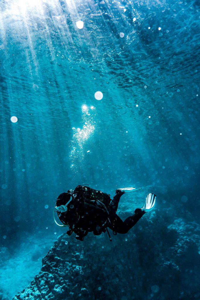 Marine Biologist job