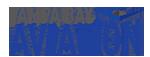 Tampa Bay Aviation logo