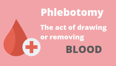 What Is Phlebotomy
