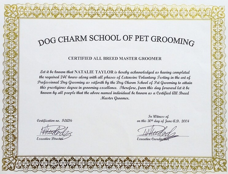 dog grooming certification example