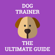 Dog Trainer - The Ultimate Guide
