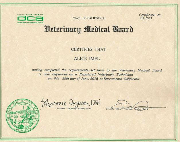 veterinary technician certification example