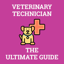 Veterinary Technician - The Ultimate Guide