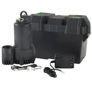 Wayne ESP25 Battery Backup Sump Pump