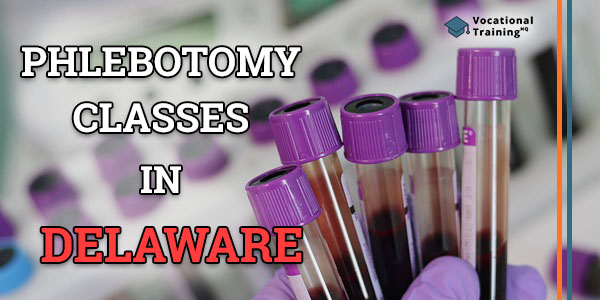 Phlebotomy Classes in Delaware