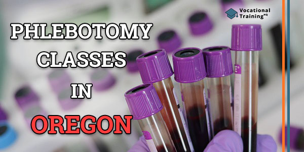 Phlebotomy Training in Oregon (Paid Classes Info)