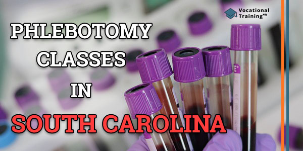 Phlebotomy Classes in South Carolina