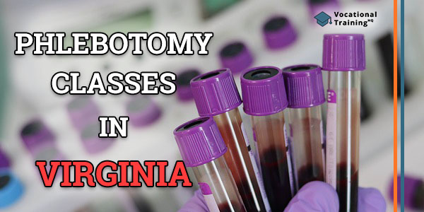 Phlebotomy Classes in Virginia