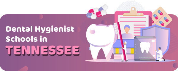 Dental Hygienist Schools in Tennessee