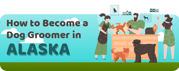 How to Become a Dog Groomer in Alaska