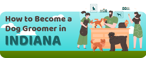 How to Become a Dog Groomer in Indiana