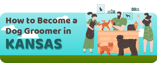 How to Become a Dog Groomer in Kansas