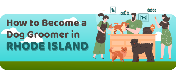 How to Become a Dog Groomer in Rhode Island