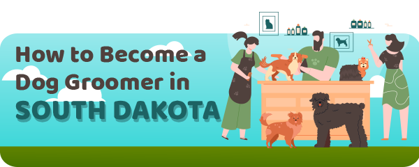 How to Become a Dog Groomer in South Dakota