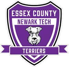 Newark Tech School of Technology logo