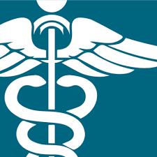 Premier Nursing Academy logo