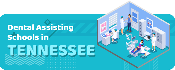 How to Become a Dental Assistant in Tennessee