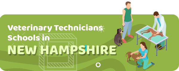How to Become a Veterinary Technician in New Hampshire