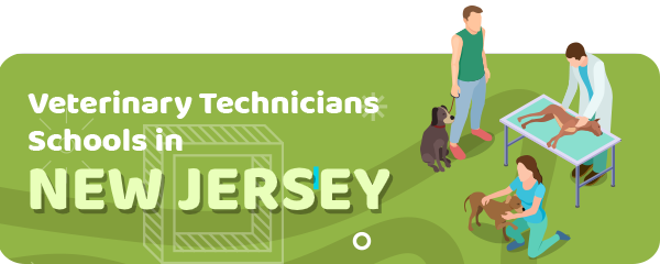 How to Become a Veterinary Technician in New Jersey