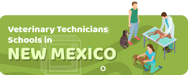 How to Become a Veterinary Technician in New Mexico