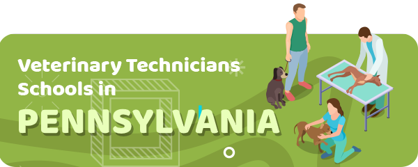 How to Become a Veterinary Technician in Pennsylvania