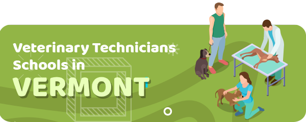 How to Become a Veterinary Technician in Vermont