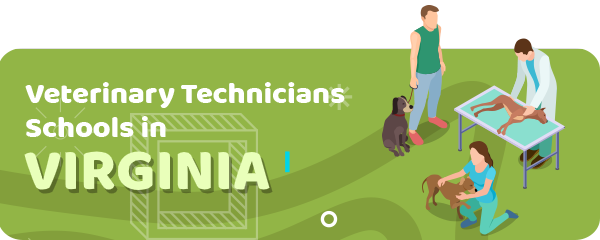 How to Become a Veterinary Technician in Virginia