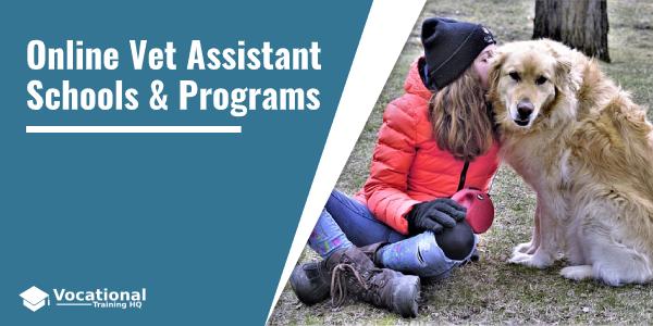 Online Vet Assistant Schools & Programs
