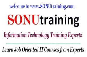 SONU Training logo