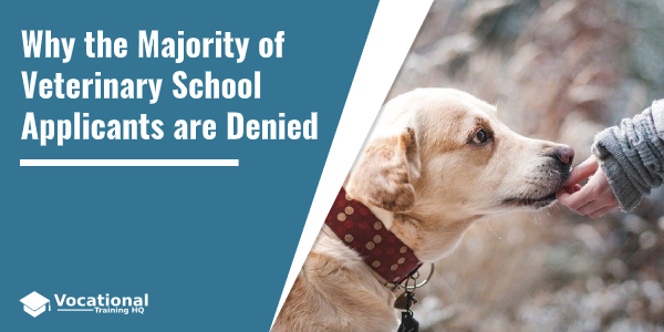 Why the Majority of Veterinary School Applicants are Denied?