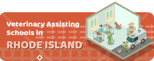 How to Become a Veterinary Assistant in Rhode Island
