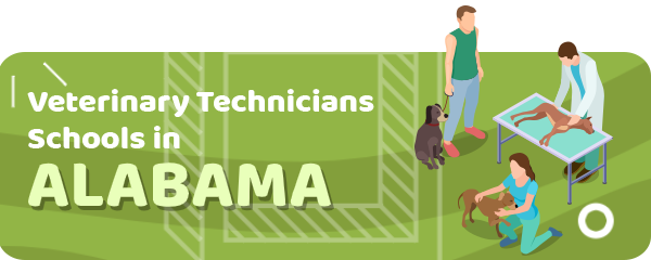 How to Become a Veterinary Technician in Alabama