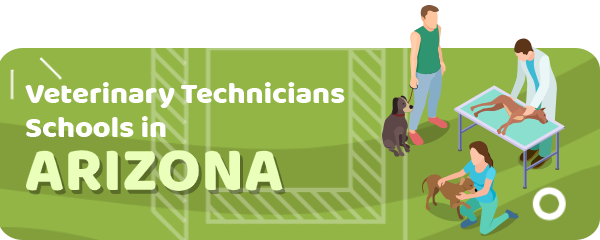 How to Become a Veterinary Technician in Arizona