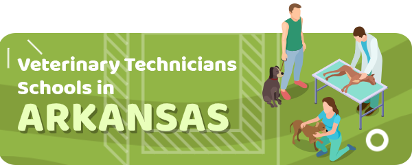 How to Become a Veterinary Technician in Arkansas