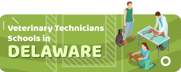 How to Become a Veterinary Technician in Delaware