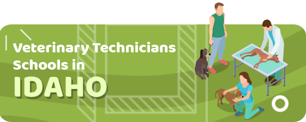 How to Become a Veterinary Technician in Idaho