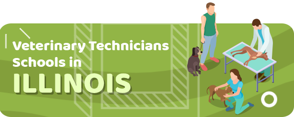 How to Become a Veterinary Technician in Illinois