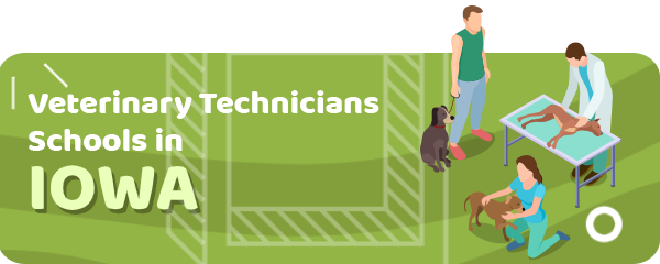 How to Become a Veterinary Technician in Iowa