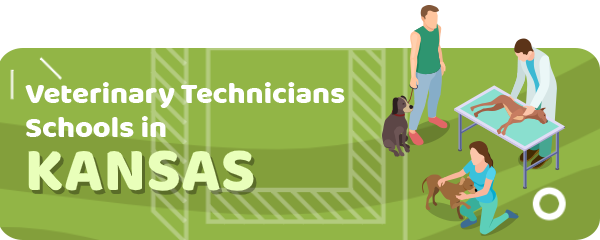 How to Become a Veterinary Technician in Kansas