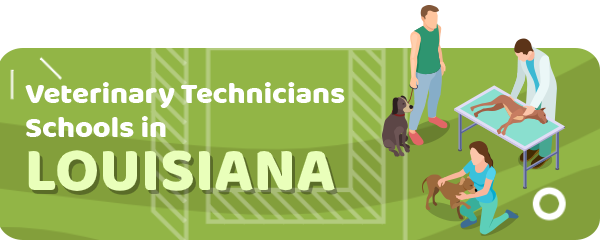 How to Become a Veterinary Technician in Louisiana