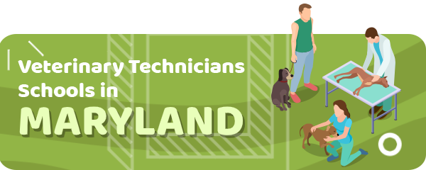 How to Become a Veterinary Technician in Maryland