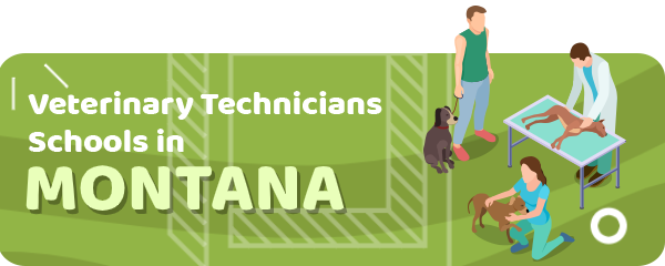 How to Become a Veterinary Technician in Montana